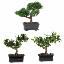 3-Piece Faux Bonsai Tree Set