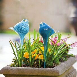 Bird Water Globe (Set of 2)