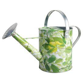 Aurelia Watering Can