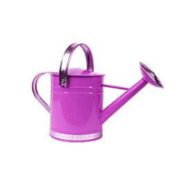 Arcadia Watering Can