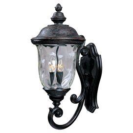 Robyn 2-Light Indoor/Outdoor Wall Lantern