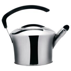 Auriga Stainless Steel Tea Kettle