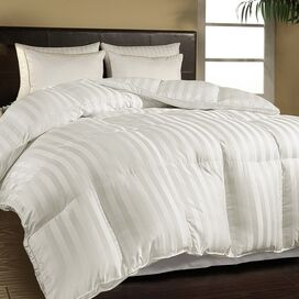 Leslie Egyptian Cotton Comforter