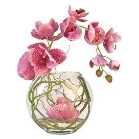 Faux Fuchsia Phalaenopsis Orchid