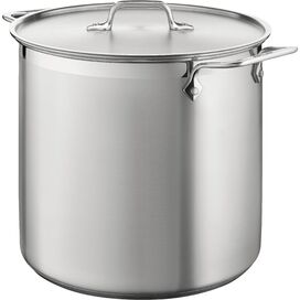 All-Clad 12-Quart Stainless Steel Multi-Pot