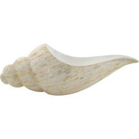 Shell Bowl
