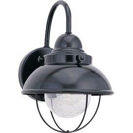 Clayson Indoor/Outdoor Wall Lantern in Black