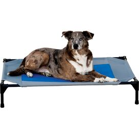 Elevated Pet Cot with Cooling Gel