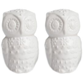 Snowy Owl Salt & Pepper Shakers