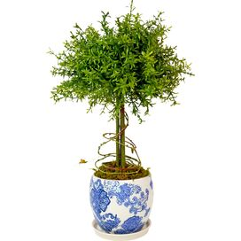 Faux Leaf Feather Plant Topiary