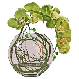 Faux Green Phalaenopsis Orchid