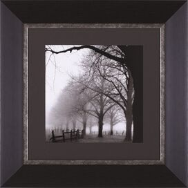 Black & White Morning Framed Print