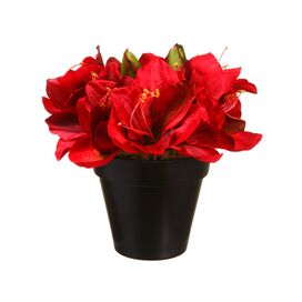 Faux Amaryllis in Red