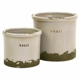 2-Piece Basil Herb Pot Set