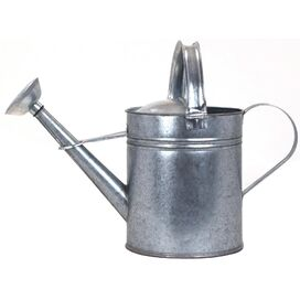 0.75-Gallon Watering Can