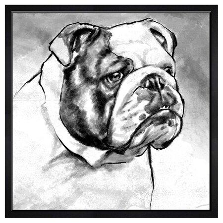 Hatcher & Ethan English Bulldog Framed Print